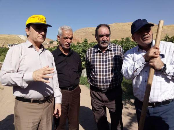 بازدید معاون وزیر جهاد کشاورزی از باغات سیلزده پلدختر و معمولان