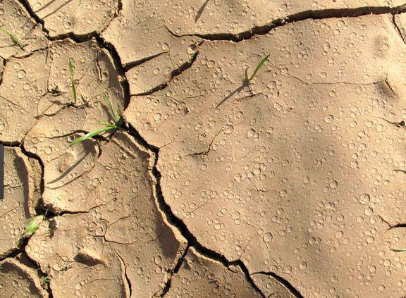 چه کردیم با سرزمین خود، با این خاک...