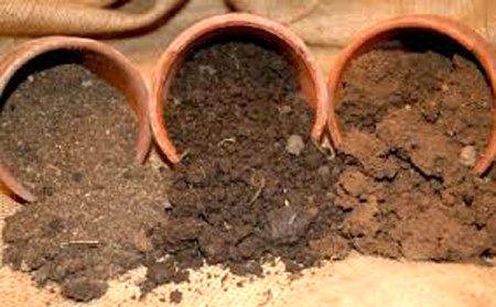 """""""فست تستهای خاک"""" بدون کالیبره کردن قابل اطمینان نیستند"""