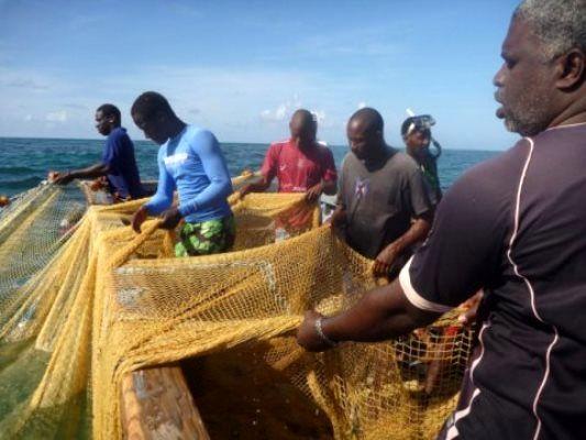 برای حفاظت از اقیانوسها، تدوین شیوهنامه رفتاری لازم است