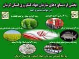 افتتاح 151 طرح کشاورزی و دامپروری در استان کرمان