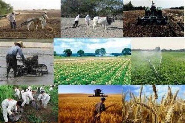 طرح استقرار کشاورزی پایدار در سطح ۴۰ روستای ارومیه اجرا می شود