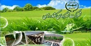 فرآخوان عمومی 6-98 دعوت از متقاضیان سرمایه گذاری در مجتمع شهرک های کشاورزی گلخانه ای آذربایجان غربی