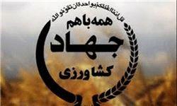 تودیع و معارفه رئیس اداره امور ایثارگران سازمان جهاد کشاورزی استان البرز برگزار شد