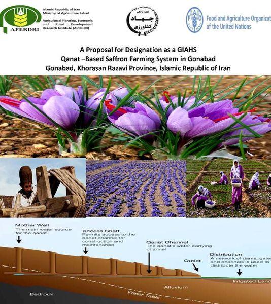 ثبت «نظام زراعت زعفران مبتنی بر قنات» در فائو
