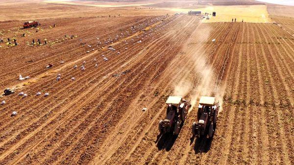 ضرورت یکپارچه سازی اراضی در تولید پایدار بخش کشاورزی