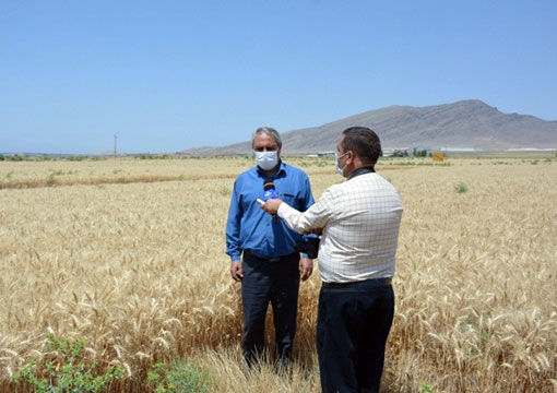 برگزاری کارگاه اطفاء حریق در عرصه های منابع طبیعی و کشاورزی در شهرستان مرند