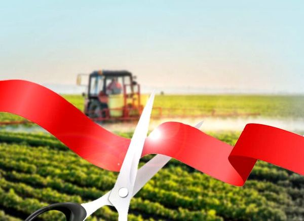 بهره برداری از 33 طرح کشاورزی در مریوان و کامیاران