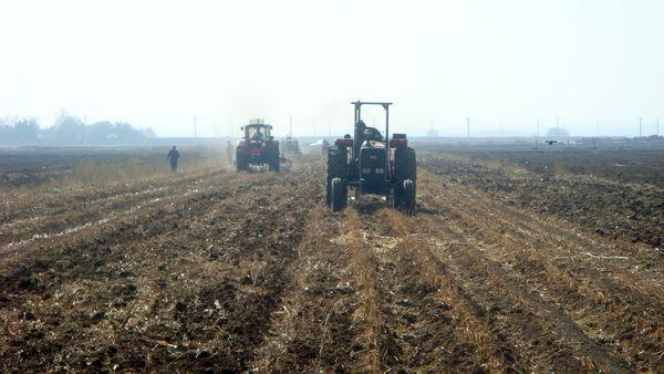 کشاورزی حفاظتی، به پایداری منابع آب و خاک کمک می کند