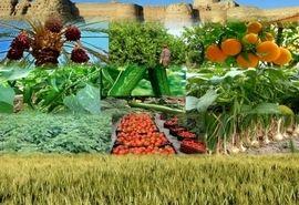 پرداخت 83 میلیارد تومان تسهیلات به 400 تولیدکننده کشاورزی مازندران در سال 99