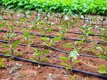 ترویج روشهای نوین و صحیح کشاورزی بین مددجویان کمیته امداد چهارمحال و بختیاری