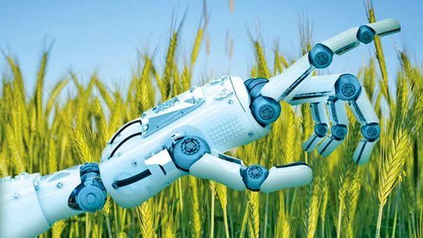 مراکز نوآوری به کمک کشاورزی میآیند/ از نوآوری در بازار، سیستم آبیاری و پهپاد تا ایدههای کلیتر مانند گردشگری