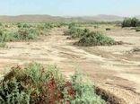 ۴۵۰ هزار هکتار از اراضی غبارخیز آذربایجانغربی از حالت بحران خارج شدند