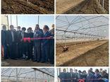 افتتاح دو واحد گلخانهای در شهرستان ورزقان با 35 میلیارد ریال سرمایه گذاری