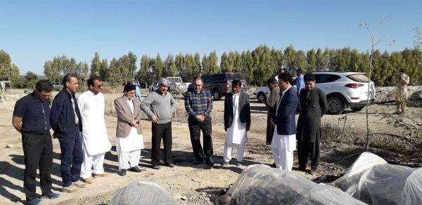 باغ مادری میوه های گرمسیری و نیمه گرمسیری در سیستان و بلوچستان ایجادمی شود