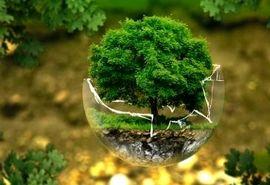 30 خدمت منابع طبیعی استان سمنان اینترنتی انجام میشود