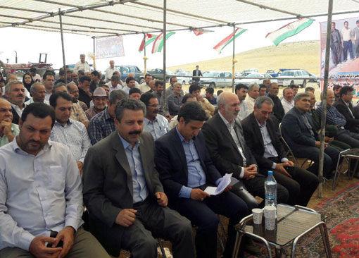 تولید بیش از ۹۰۰ هزار تن گندم در استان آذربایجان شرقی