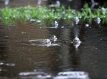 ایران آخر هفته بارانی میشود