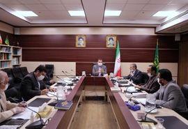 کمیته ملی راهبردی تولید و بهداشت دام کشور آغاز به کار کرد