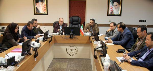نشست فصلی ویدئوکنفرانسی زراعت در استان تهران برگزار شد