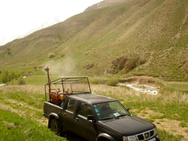کانون یابی ملخ در 800 هکتار مراتع لاریجان آمل/ مبارزه 200 هکتاری