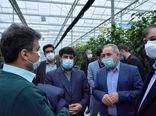 راهاندازی پروژه بزرگ کشت و صنعت با محوریت باغبانی در منطقه یکانات شهرستان مرند