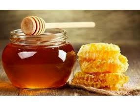 افزایش 20 درصدی کلنیهای زنبور عسل در سوادکوهشمالی/تولید 557 تنی عسل