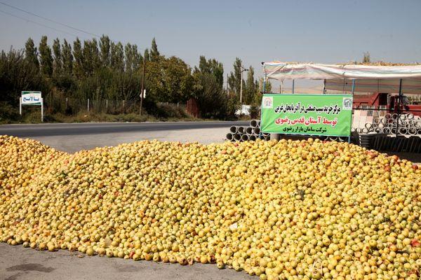 آغاز خرید نامحدود سیب صنعتی آذربایجان غربی توسط آستان قدس رضوی