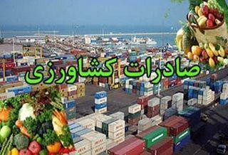 برداشت 160هزار تنی پیاز در استان زنجان