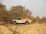 مبارزه باملخ صحرایی نیازمند 20 میلیارد تومان اعتبار است