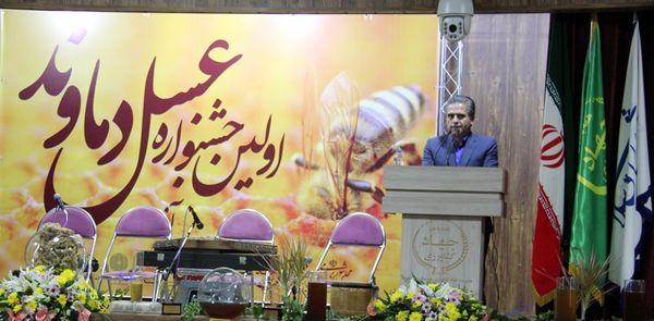 نیمی از عسل استان تهران در دماوند تولید می شود