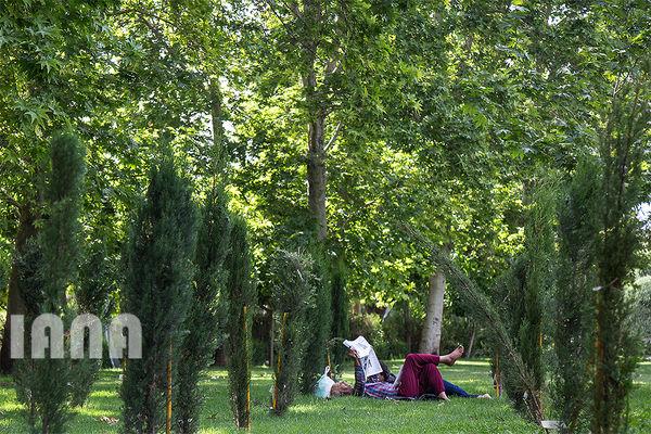 استراحت در پارک