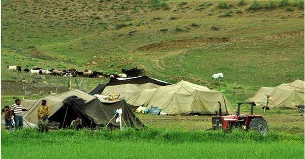 مهاجرت معکوس پنج تا ۱۰ درصدی خانوارهای عشایری