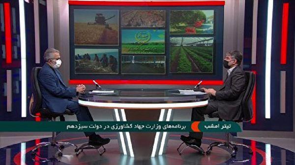 تعیین قیمت 7500 تومانی گندم برای سال زراعی جدید