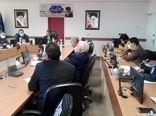 گروه های رصد و پایش دریافت تولیدات واحدهای پرورش مرغ در استان تهران ایجاد می شود