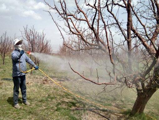 مبارزه  پیش بهاره  در باغات شهرستان اهر علیه آفات و بیماری ها در سطح 5 هزار هکتار
