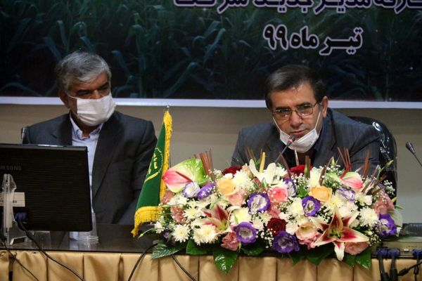 تلاش برای دستیابی به خودکفایی تولید ذرت در خوزستان