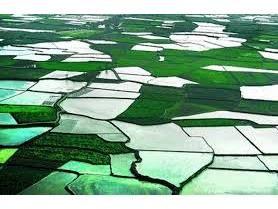 56 هزار قطعه زمین کشاورزی بابل در سامانه سیاک ترسیم شد