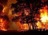 کاهش آتش سوزی در منابع طبیعی در مقایسه با مدت مشابه سال قبل