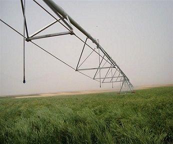 تخصیص مبلغ 480 میلیارد ریال اعتبار از محل کمک های فنی و اعتباری توسعه سامانه های نوین آبیاری به استان زنجان