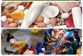 75 پروژه تولیدی و عمرانی بخش کشاورزی به بهره برداری میرسد