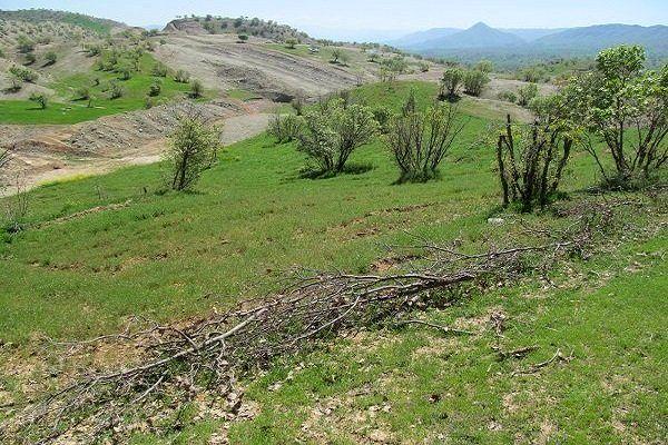 تثبیت بیش از ۸۰۰ هزار هکتار اراضی ملی و طبیعی در آذربایجان شرقی