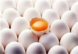 تولید 6 هزار و 957 تن تخم مرغ در استان خوزستان