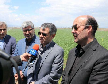 اردبیل با تلاش به قطب تولید محصولات گلخانهای کشور تبدیل میشود