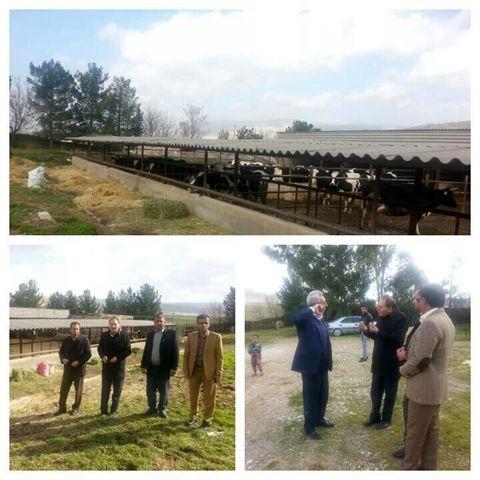 بازدید نماینده مجلس  از پروژههای شاخص کشاورزی ایوان