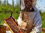 پرداخت 25 میلیارد تومان تسهیلات ارزان قیمت به زنبورداران
