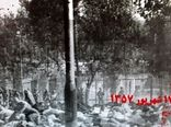 روایت شاهدان از واقعه 17 شهریور در مستند «شاهدان روز جمعه»
