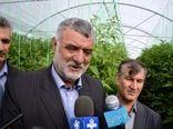 توسعه گلخانه ها در کشور از اولویت های وزارت جهاد کشاورزی است