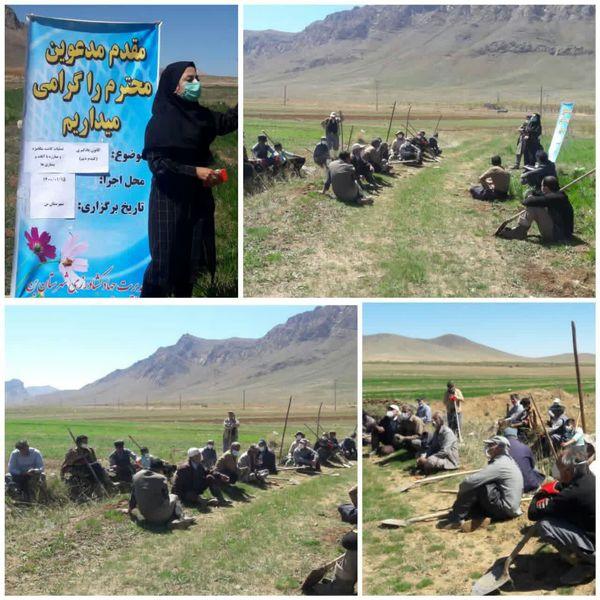 برگزاری کارگاه آموزشی مبارزه با سن غلات در روستای لارک شهرستان بن