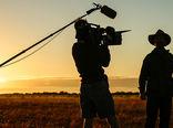 روایات تلخ و شیرین از تاثیرات قلم خبرنگاران بخش کشاورزی